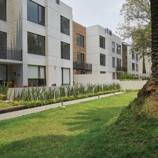 6 Jardín departamento